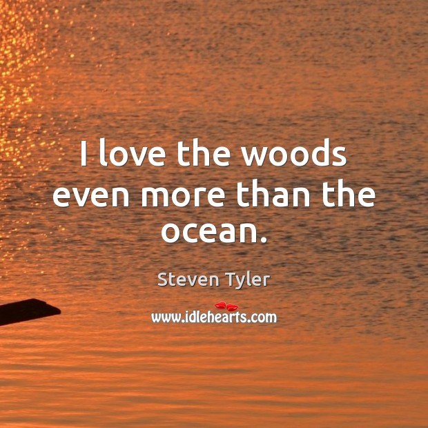 Image, I love the woods even more than the ocean.