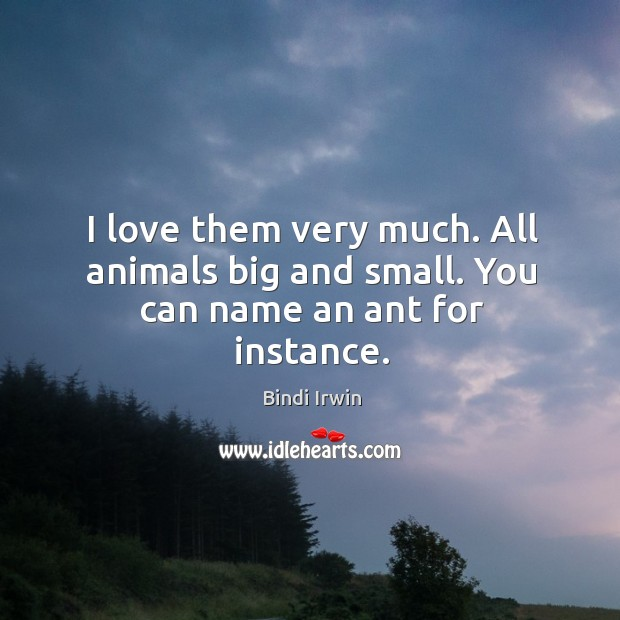 Image, I love them very much. All animals big and small. You can name an ant for instance.