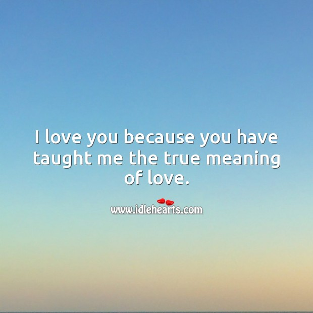 I love you because you have taught me the true meaning of love. True Love Quotes Image