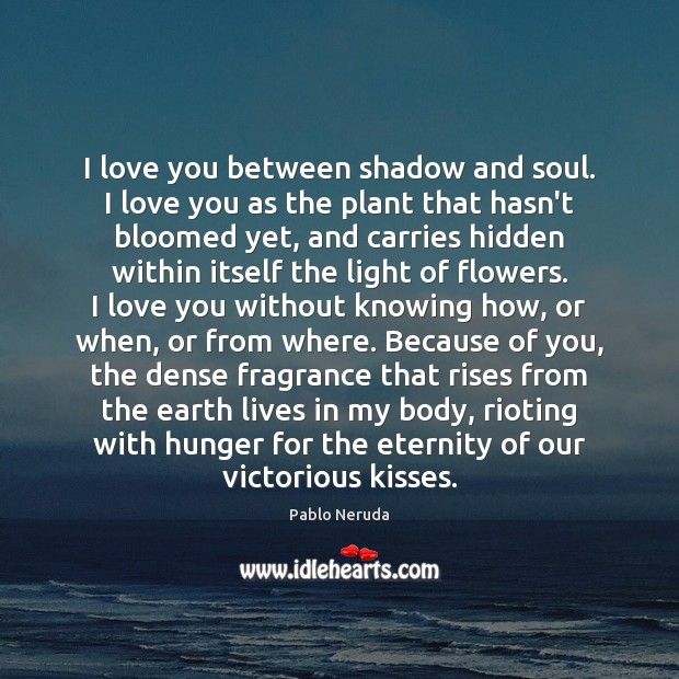 I love you between shadow and soul. I love you as the Image