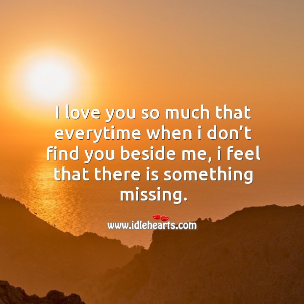 I love you so much that everytime when I don't find you beside me, I feel that there is something missing. Love You So Much Quotes Image