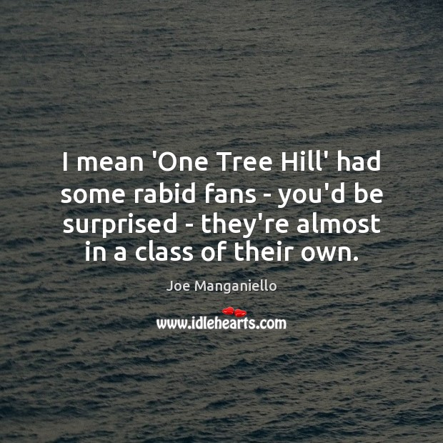I mean 'One Tree Hill' had some rabid fans – you'd be Image