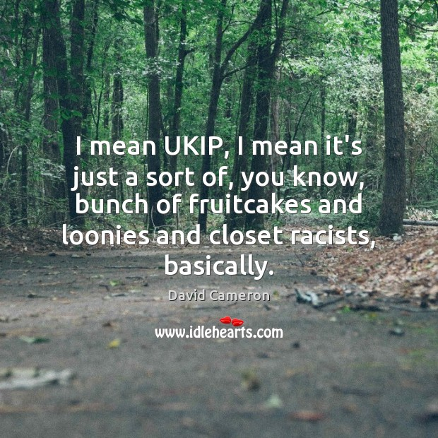 I mean UKIP, I mean it's just a sort of, you know, David Cameron Picture Quote
