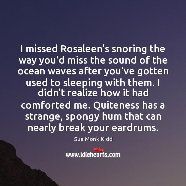 I missed Rosaleen's snoring the way you'd miss the sound of the Image