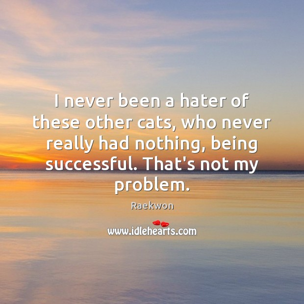 I never been a hater of these other cats, who never really Being Successful Quotes Image