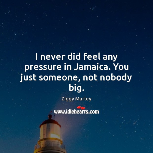 I never did feel any pressure in Jamaica. You just someone, not nobody big. Image