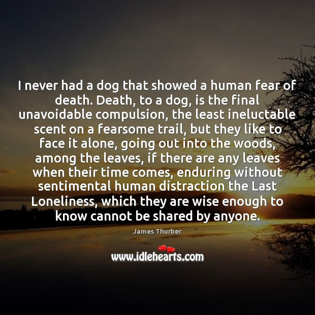 I never had a dog that showed a human fear of death. James Thurber Picture Quote