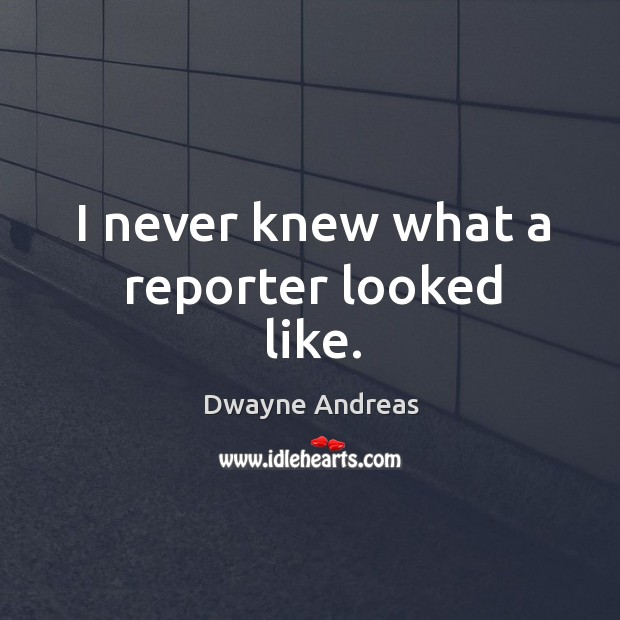 I never knew what a reporter looked like. Image