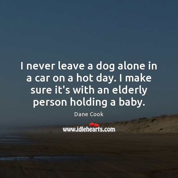 I never leave a dog alone in a car on a hot Dane Cook Picture Quote