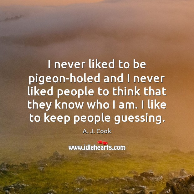Image, I never liked to be pigeon-holed and I never liked people to