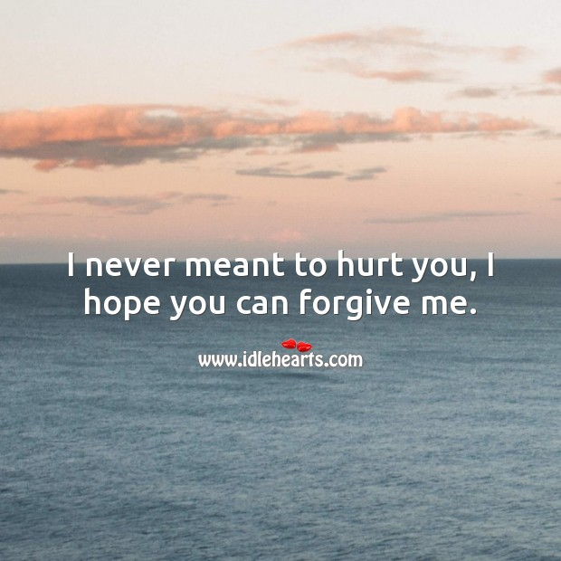 I never meant to hurt you, I hope you can forgive me. Hurt Quotes Image