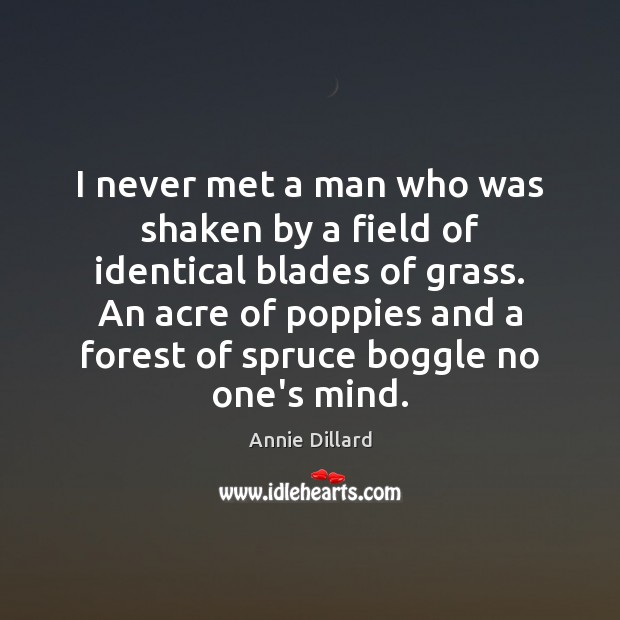 I never met a man who was shaken by a field of Image