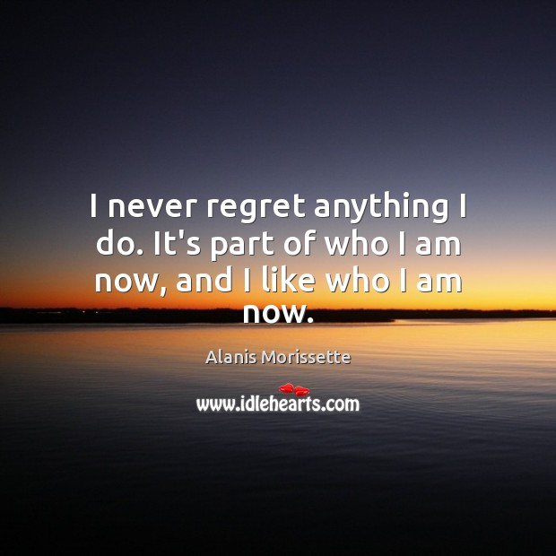 I never regret anything I do. It's part of who I am now, and I like who I am now. Never Regret Quotes Image