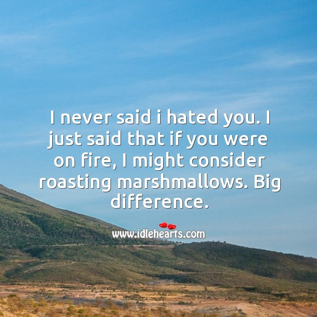 I never said I hated you. I just said that if you were on fire, I might consider roasting marshmallows. Image
