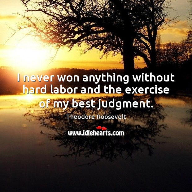Image, I never won anything without hard labor and the exercise of my best judgment.