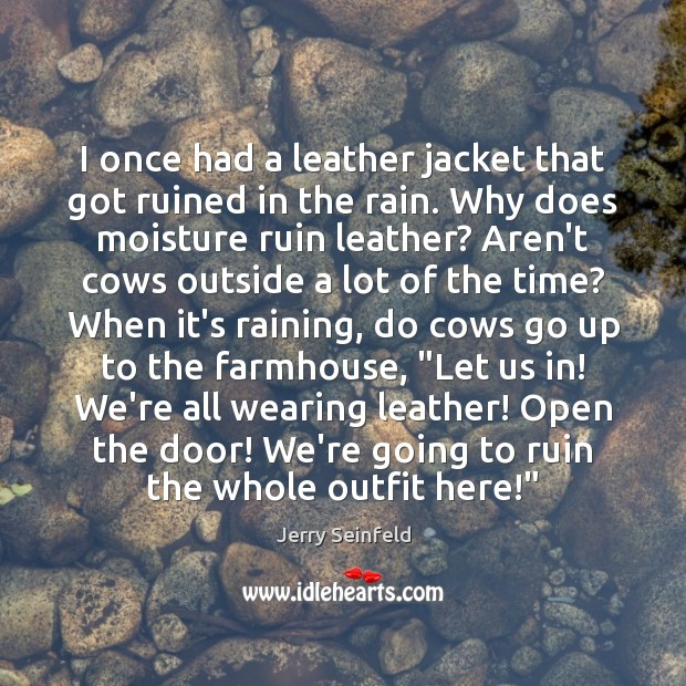 I once had a leather jacket that got ruined in the rain. Jerry Seinfeld Picture Quote