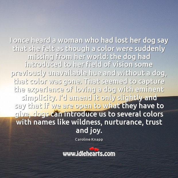 Image, I once heard a woman who had lost her dog say that