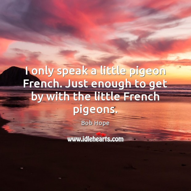 Image, I only speak a little pigeon French. Just enough to get by with the little French pigeons.