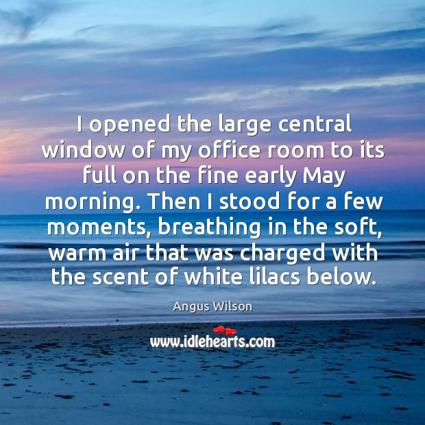 I opened the large central window of my office room to its full on the fine early may morning. Image
