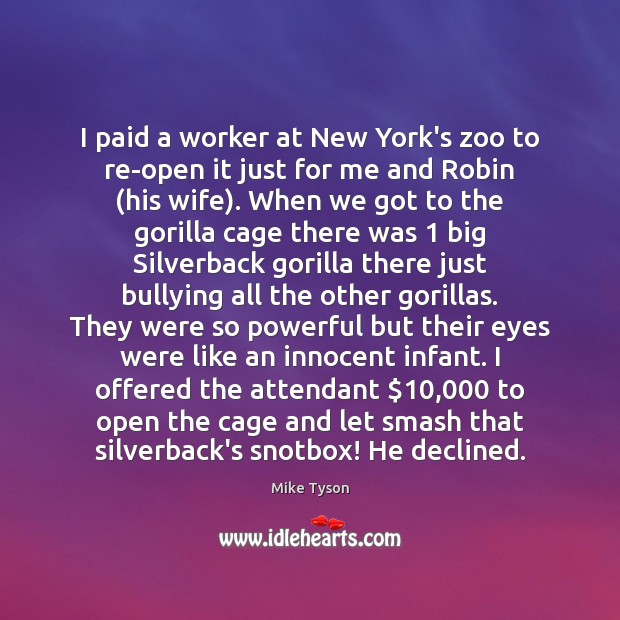 Image, I paid a worker at New York's zoo to re-open it just
