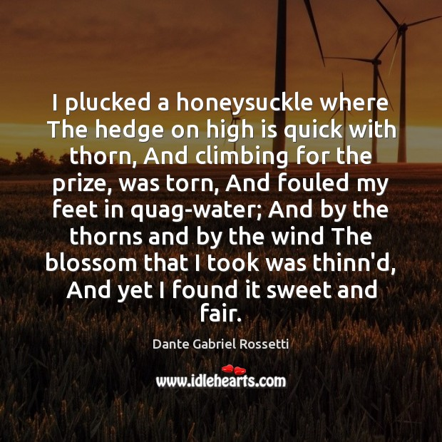 I plucked a honeysuckle where The hedge on high is quick with Dante Gabriel Rossetti Picture Quote