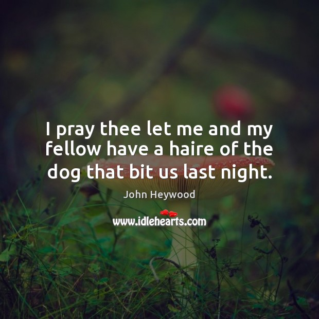 I pray thee let me and my fellow have a haire of the dog that bit us last night. John Heywood Picture Quote