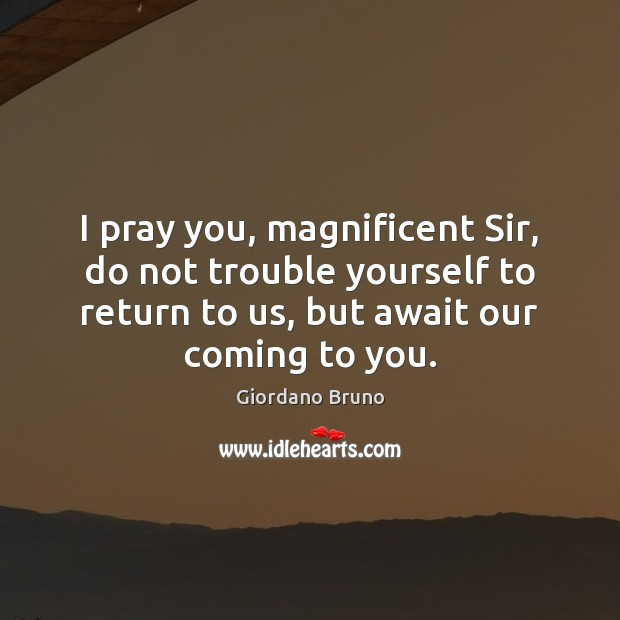 Image, I pray you, magnificent Sir, do not trouble yourself to return to