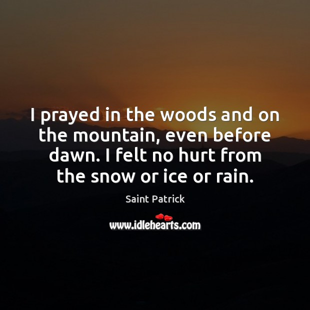 I prayed in the woods and on the mountain, even before dawn. Saint Patrick Picture Quote