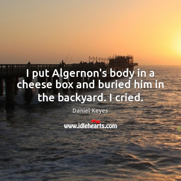 I put Algernon's body in a cheese box and buried him in the backyard. I cried. Daniel Keyes Picture Quote