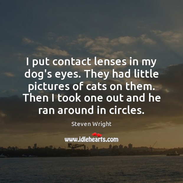 I put contact lenses in my dog's eyes. They had little pictures Steven Wright Picture Quote