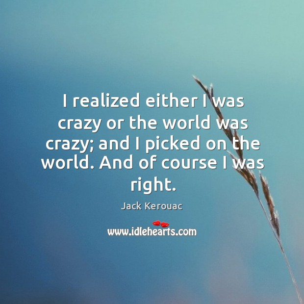 Image, I realized either I was crazy or the world was crazy; and