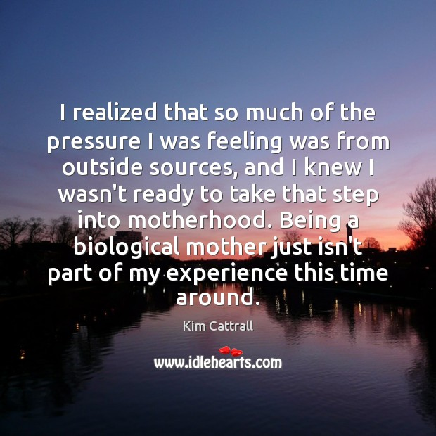 I realized that so much of the pressure I was feeling was Kim Cattrall Picture Quote