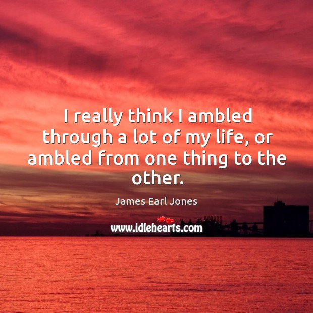 I really think I ambled through a lot of my life, or ambled from one thing to the other. James Earl Jones Picture Quote