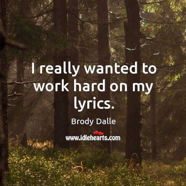 I really wanted to work hard on my lyrics. Brody Dalle Picture Quote