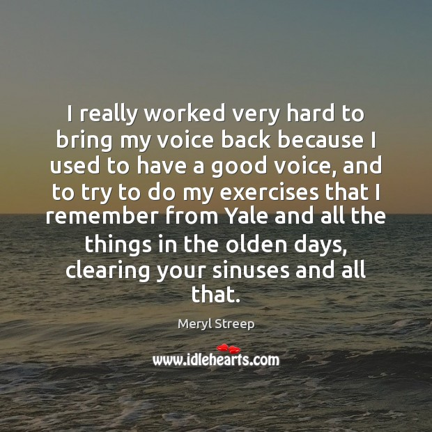 I really worked very hard to bring my voice back because I Meryl Streep Picture Quote