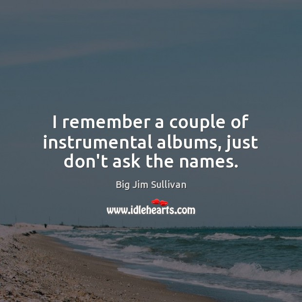 I remember a couple of instrumental albums, just don't ask the names. Big Jim Sullivan Picture Quote