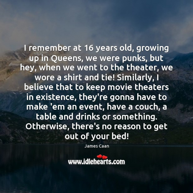 I remember at 16 years old, growing up in Queens, we were punks, James Caan Picture Quote