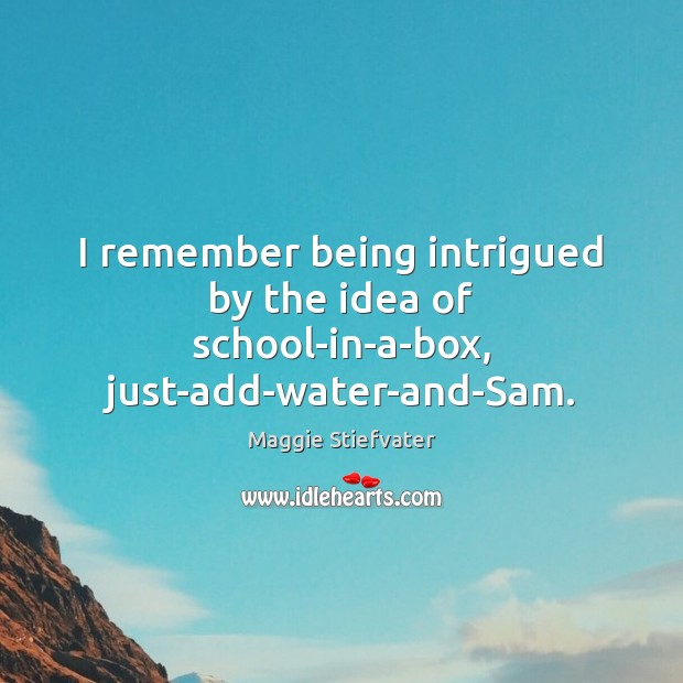 I remember being intrigued by the idea of school-in-a-box, just-add-water-and-Sam. Image