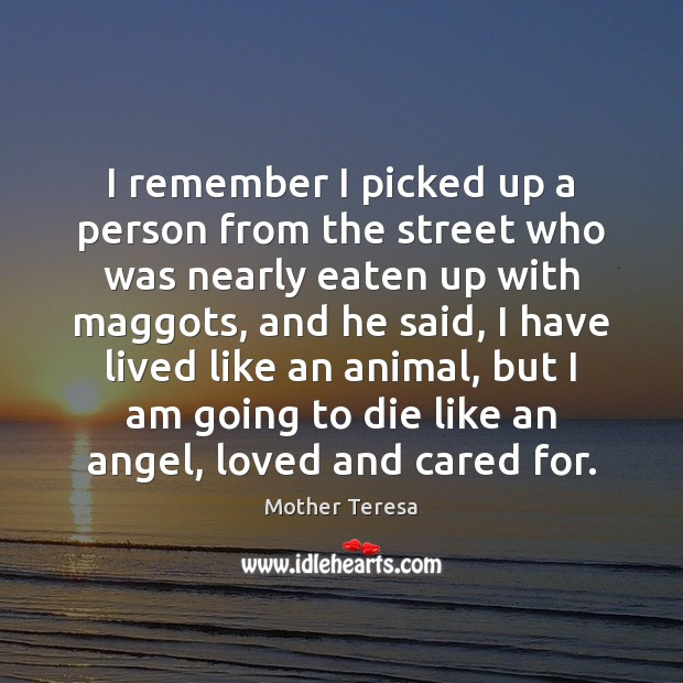 I remember I picked up a person from the street who was Mother Teresa Picture Quote