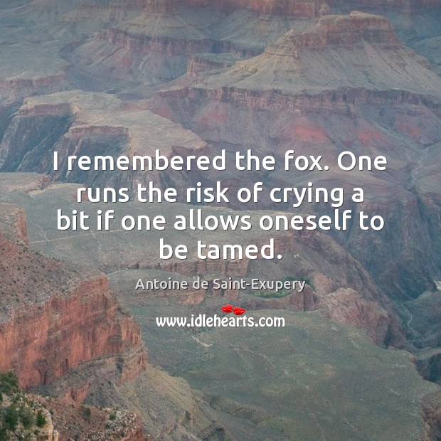 I remembered the fox. One runs the risk of crying a bit if one allows oneself to be tamed. Image
