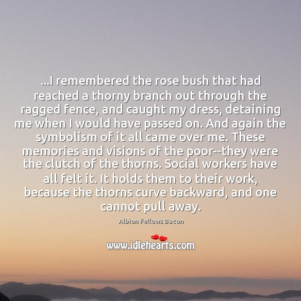 Image, …I remembered the rose bush that had reached a thorny branch out
