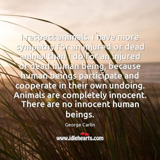 I respect animals. I have more sympathy for an injured or dead George Carlin Picture Quote