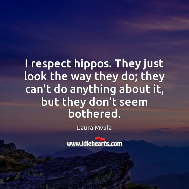 I respect hippos. They just look the way they do; they can't Laura Mvula Picture Quote