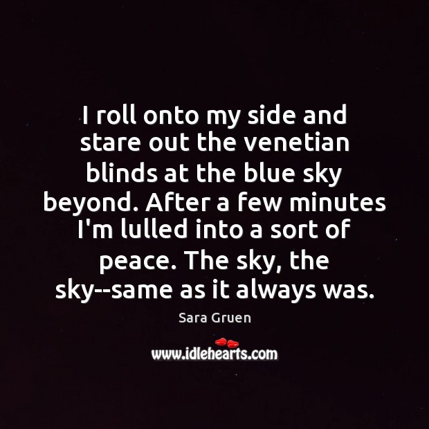 I roll onto my side and stare out the venetian blinds at Sara Gruen Picture Quote