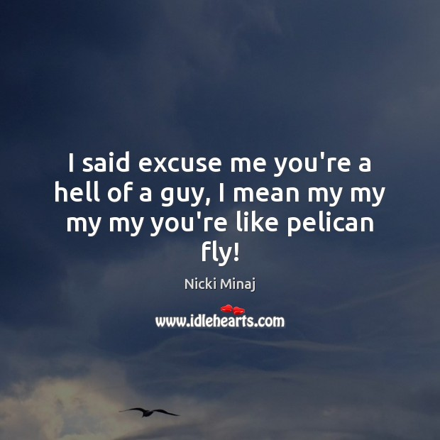 Image, I said excuse me you're a hell of a guy, I mean my my my my you're like pelican fly!