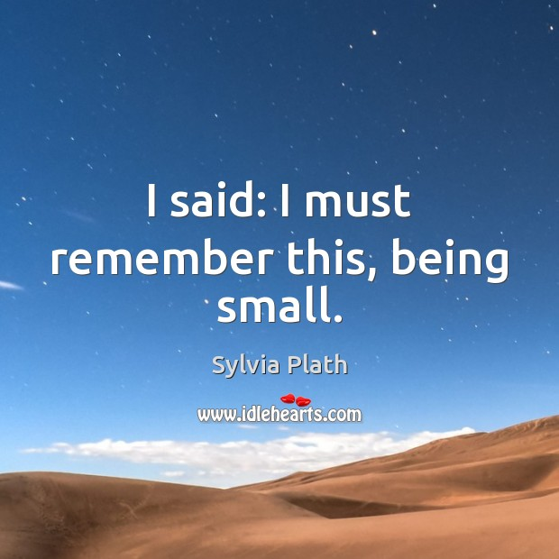 Image, I said: I must remember this, being small.