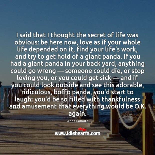 I said that I thought the secret of life was obvious: be Anne Lamott Picture Quote