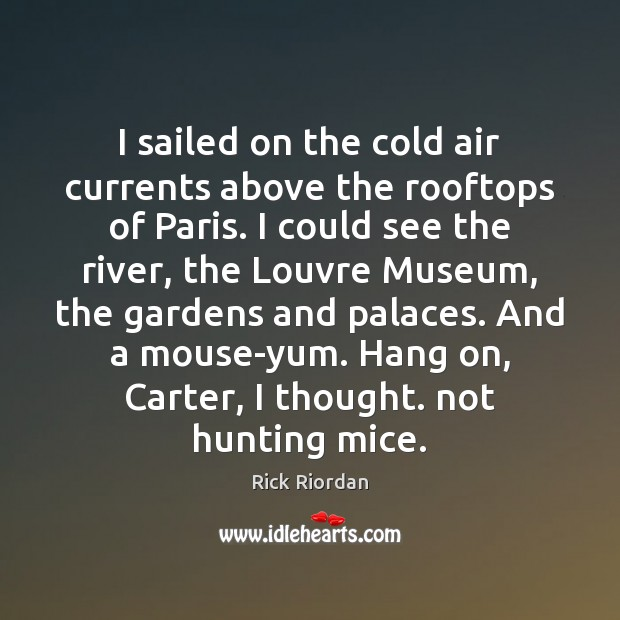 I sailed on the cold air currents above the rooftops of Paris. Image