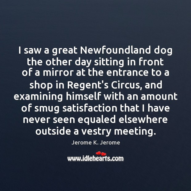 I saw a great Newfoundland dog the other day sitting in front Image
