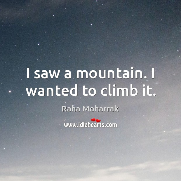 I saw a mountain. I wanted to climb it. Image